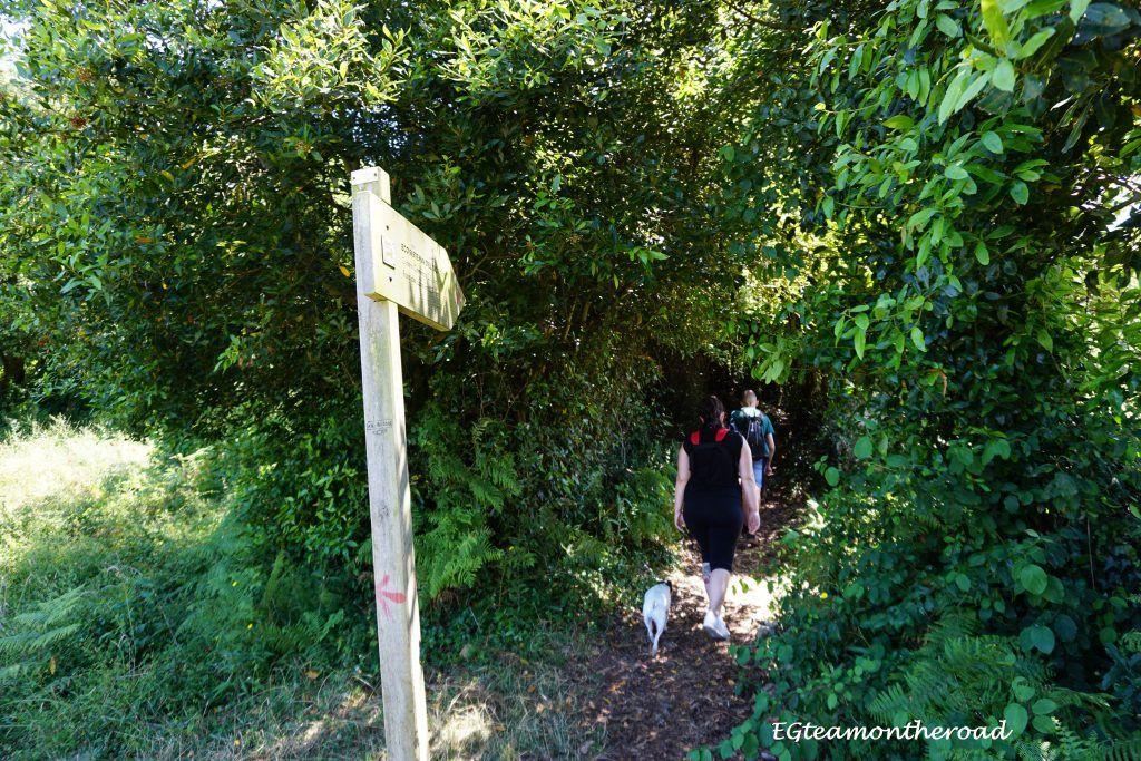 Acceso sendero Faro del Caballo