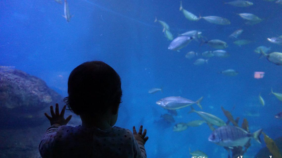 Museos con niños, ¿por qué no? Visitamos el Museo Maritimo