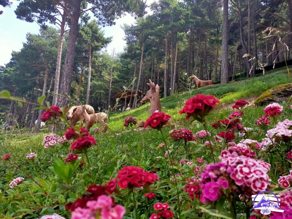 Qué ver en los jardines contemporáneos de Juberri