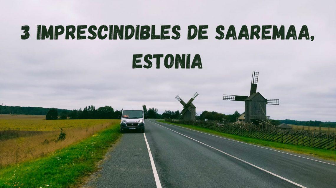 3 IMPRESCINDIBLES DE SAAREMA